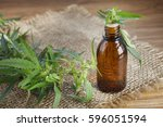 medical marijuana cannabis oil... | Shutterstock . vector #596051594