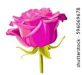 vintage garden spring pink... | Shutterstock .eps vector #596069678
