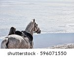 Girl And White Horse On Winter...