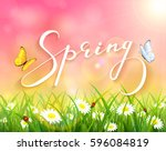 lettering spring with pink... | Shutterstock . vector #596084819