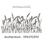 wheat field background hand... | Shutterstock .eps vector #596192393