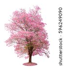 pink flower tree colorful... | Shutterstock . vector #596249090