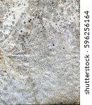 molded wet paper | Shutterstock . vector #596256164