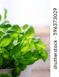 Fresh Basil Leaves  Herb With...
