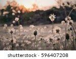 golden heaven light hope... | Shutterstock . vector #596407208