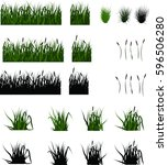 set of swamp grass and reeds ... | Shutterstock .eps vector #596506280