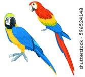 parrots vector set | Shutterstock .eps vector #596524148