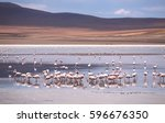 high altitude lagoon with... | Shutterstock . vector #596676350