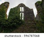 A Window In Ruins Overgrown...