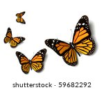 Stock photo butterfly 59682292