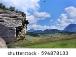 American Cliff Swallows Nest On ...