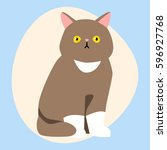 cat breed cute pet brown fluffy ... | Shutterstock .eps vector #596927768