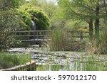 Monet Bridge Over Creek In Park