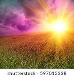 yalow sun set over the wheat... | Shutterstock . vector #597012338