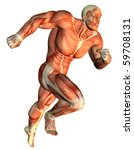 3d Rendering Muscle Galloping...