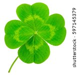 st. patrick's day symbol. lucky ... | Shutterstock . vector #597145379