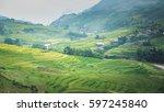 rice field in vietnam.  | Shutterstock . vector #597245840