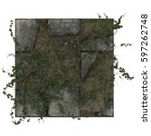 3d ivy on dirty paving tiles | Shutterstock . vector #597262748