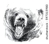 brown bear. bear head. roaring... | Shutterstock . vector #597315980