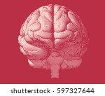 white engraving brain... | Shutterstock .eps vector #597327644