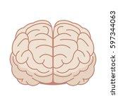 human brain in flat style....   Shutterstock .eps vector #597344063