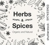 hand drawn herbs and spices...   Shutterstock .eps vector #597455903