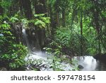 rain in the tropical forest in... | Shutterstock . vector #597478154