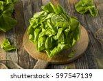 raw green organic boston butter ... | Shutterstock . vector #597547139