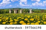 spring is a good sunny weather... | Shutterstock . vector #597566198