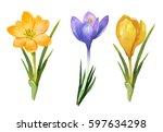 watercolor illustration. spring ...   Shutterstock . vector #597634298