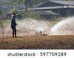men are watering vegetables ... | Shutterstock . vector #597709289