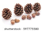 cones and acorns isolated on a... | Shutterstock . vector #597775580