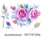 pink rose   watercolor | Shutterstock . vector #597797396