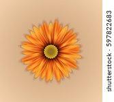 Vector Realistic Yellow Orange...