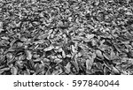 black and white background from ... | Shutterstock . vector #597840044