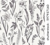 vintage seamless floral pattern.... | Shutterstock .eps vector #597937160