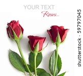 Stock photo a red roses on a white background 59797045