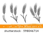 set of isolate wheat ears with... | Shutterstock .eps vector #598046714