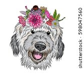 small  cute labradoodle puppy... | Shutterstock .eps vector #598047560