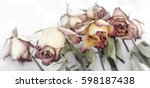 faded and tinted roses on white ... | Shutterstock . vector #598187438