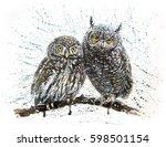 little owl | Shutterstock . vector #598501154