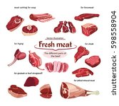 sketch cutting beef meat parts... | Shutterstock .eps vector #598558904