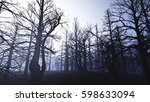 dead forest misty woods 3d... | Shutterstock . vector #598633094