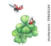 Ladybug In Flight And Sitting...
