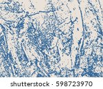 relief stone surface texture.... | Shutterstock .eps vector #598723970
