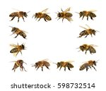 Group Of Bee Or Honeybee In...