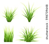 set realistic vector  grass.... | Shutterstock .eps vector #598739648