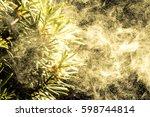 Cloud Of Pollen Tree