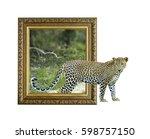 Leopard in old wooden frame...