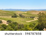 Small photo of View of the valley and the vinyard in Napa